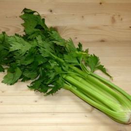 Celeri vert